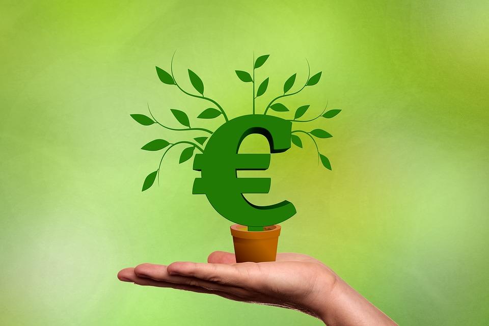 Idei de afaceri cu fonduri europene
