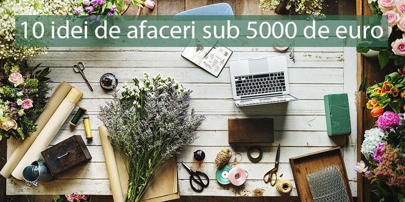 idei de afaceri sub 5000 euro